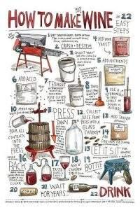 În căutare de un vin roșu sec. Cum alegem un vin roșu sec? 1