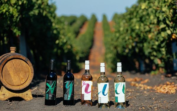 Agrici Winery Chardonnay 2017 – cel mai feminin vin alb, sec