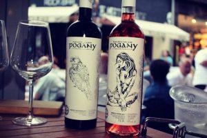 vinuri Pogany