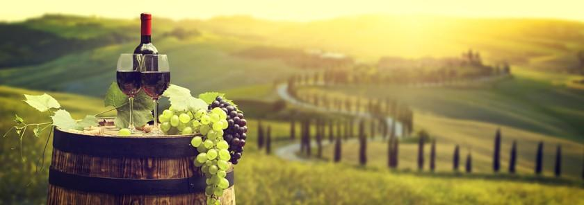 """The best Italian Wine? Wine recommendations from """"Land of wine"""""""