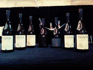În lumina reflectoarelor - vinuri de la micii producători 8