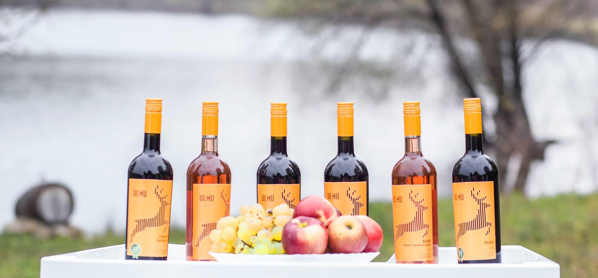 De ce aleg vinurile de la micii producători din Moldova? 10