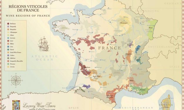 Informații utile despre vinul francez. Vinuri de Bordeaux sau Burgundia?