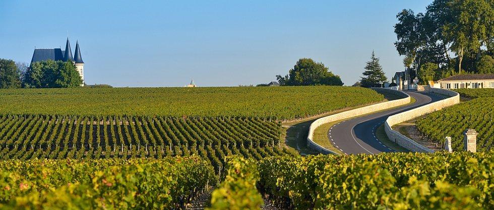 Informații utile despre vinul francez. Vinuri de Bordeaux sau Burgundia? 4