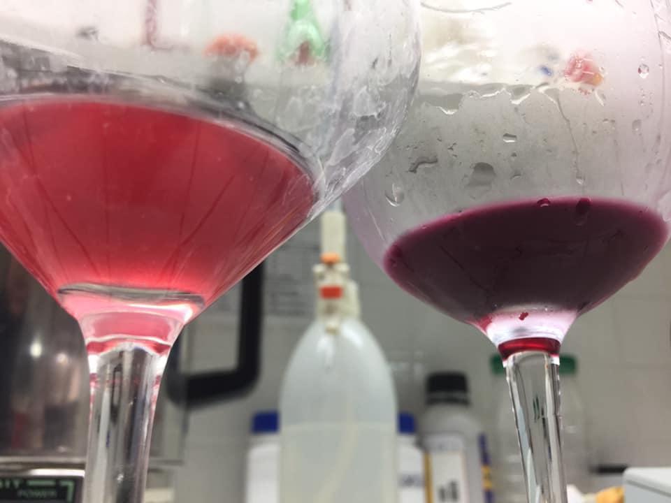 rose vin