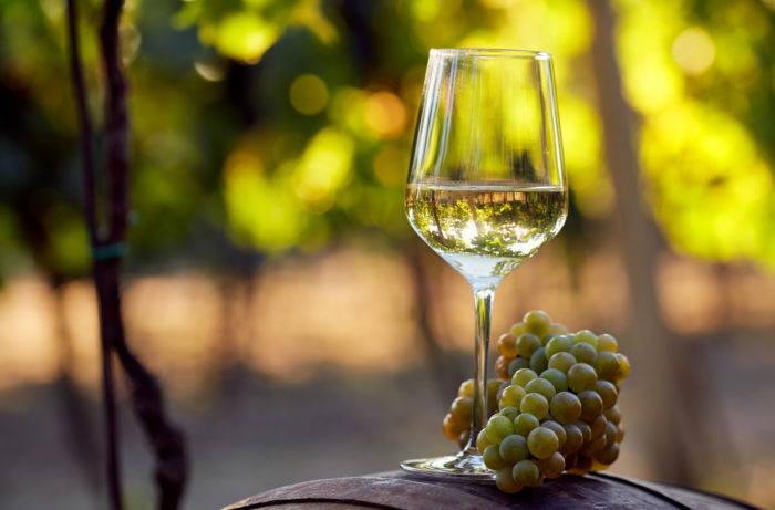 Articole din lumea vinului 26
