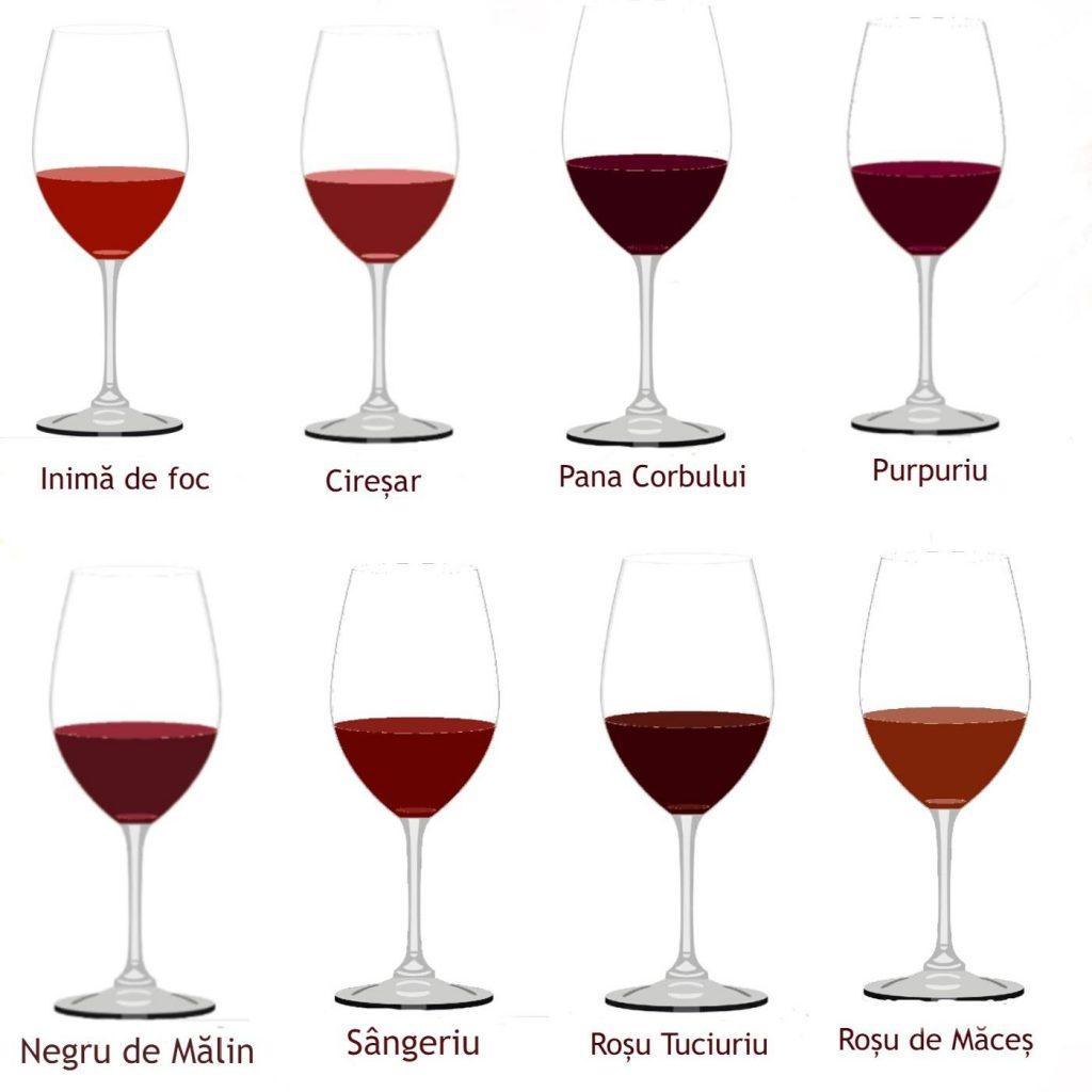 Culorile vinului moldovenesc 2